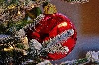 Eventi di Natale a Ferrara Foto